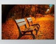 Autumn Park Bench Poster