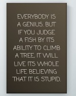Everybody Is A Genius Poster