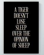 Lose Sleep Poster