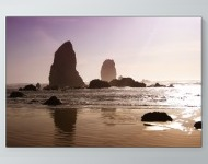 Oregon Beach Poster