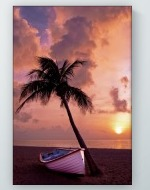 Palm Tree With Boat Poster