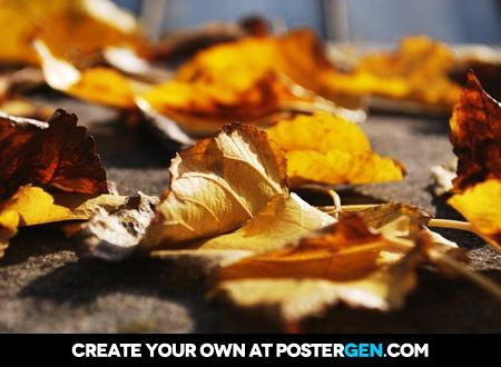 Autumn Leaves Print