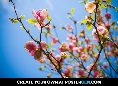 Orchid Tree Print